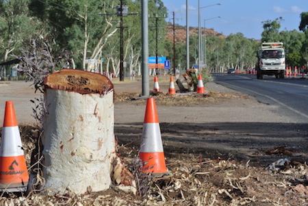 2613 Stuart Highway trees OK