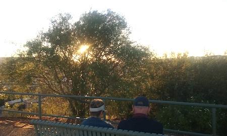2637 sunset tree OK